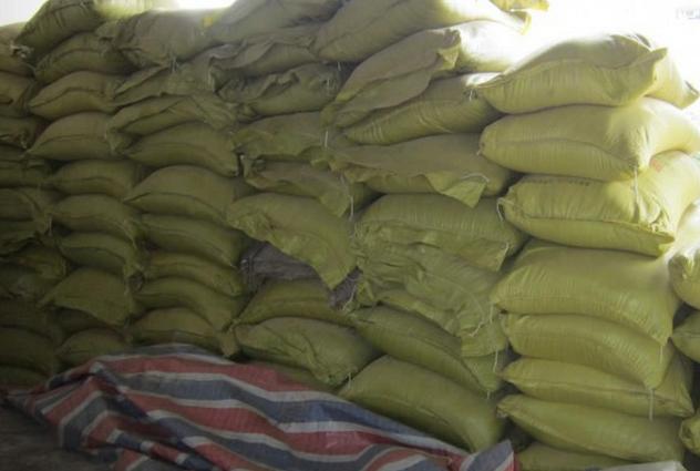 Nhộng tắm khô chất lượng cho thức ăn chăn nuôi