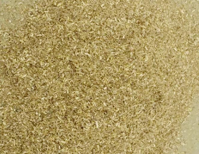 Đọt đậu phộng chuyên dùng làm thức ăn gia cầm