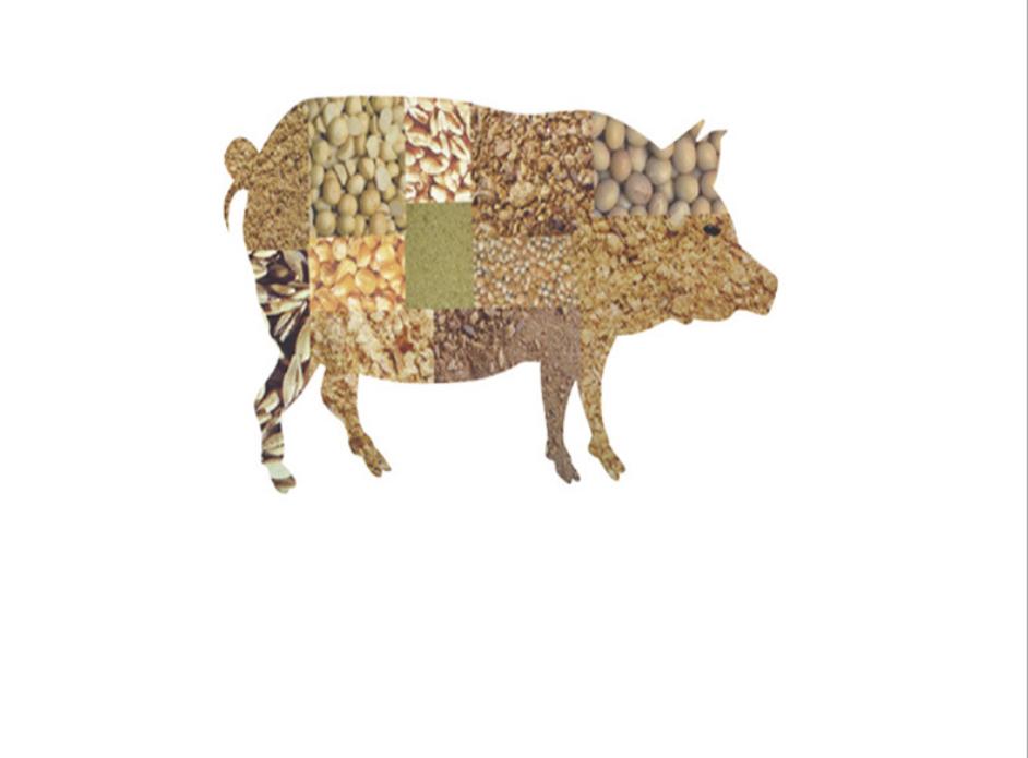 thức ăn hỗn hợp thí nghiệm cho lợn  kích thích thèm ăn