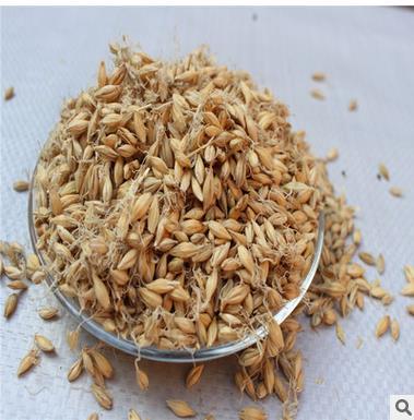 NLSX bia Pure malt barley malt fried green malt clean and free of miscellaneous cereals feed barley