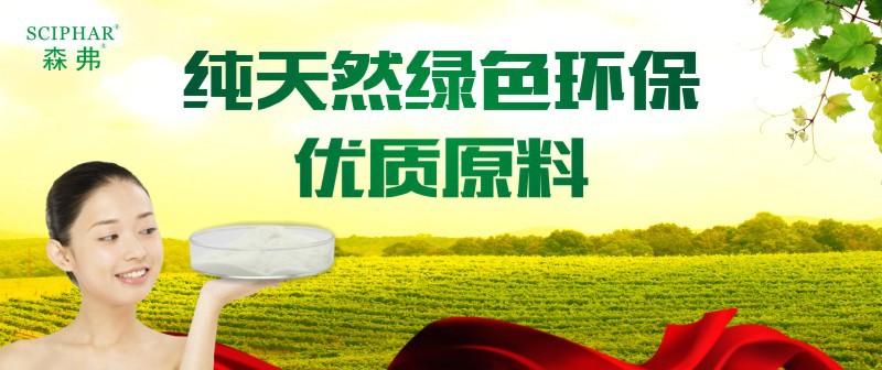 NLSX Thuốc trừ sâu   98% oxymatrine health products raw materials manufacturers Spot direct shippin