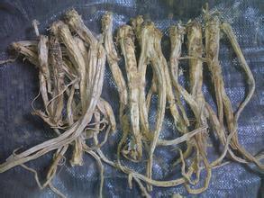 Nguyên liệu sản xuất mỹ phẩm Sen Ran chuyên sản xuất các chiết xuất sinh học từ hoa chuông