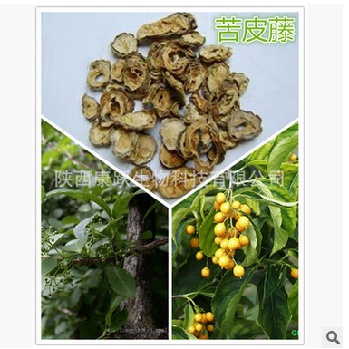 NLSX Thuốc trừ sâu Celangulin 6% Celastrus extract natural plant extracts biological pesticides inse
