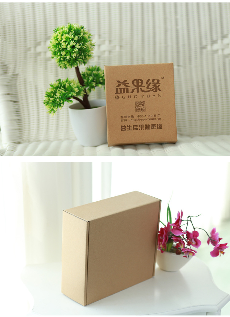 Hộp giấy đựng Pizza Special hard cardboard small airplane box cardboard color printing courier Taoba