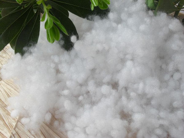 Vật liệu lót may mặc  Welch Allyn cotton industry