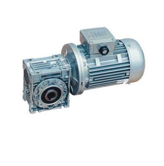 RV worm reducer worm reducer worm gear motor gear motor turbine gearbox