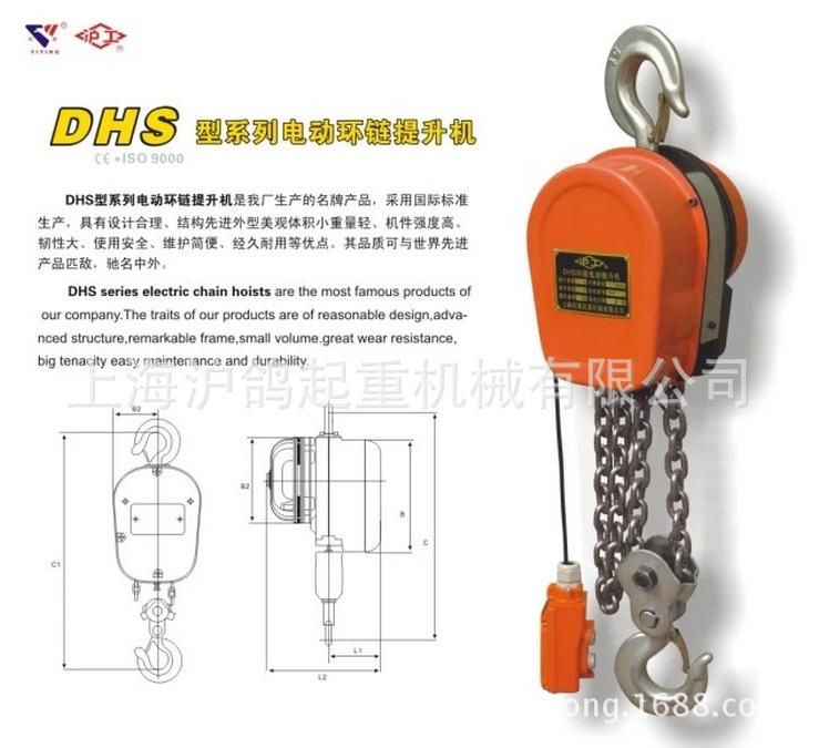 Factory direct electric hoist 5T*6M electric hoist DHS electric hoist