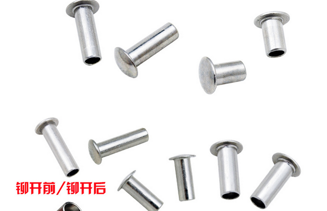 Đinh   Stainless Steel Hollow Nail Nail Stainless Steel Half-Hollow Rivet Stainless Steel Rivet 304