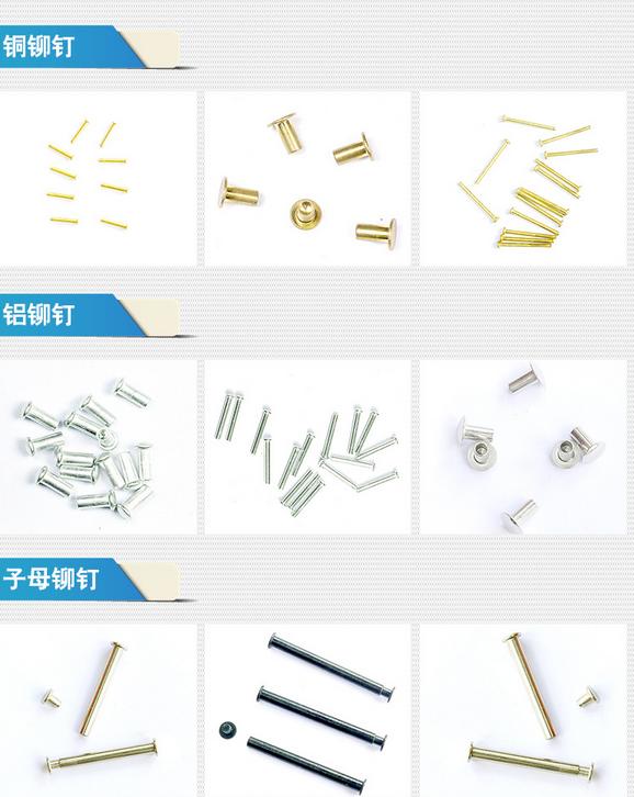 Đinh Manufacturers of 304 stainless steel rivets, album Zuzi rivets, hinge rivets, stationery rivets