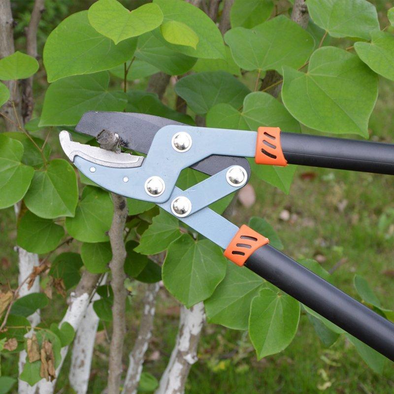 2017 vườn kéo thô cắt cành nhánh cắt cắt vườn công cụ khổng lồ kéo làm vườn kéo mạnh cắt
