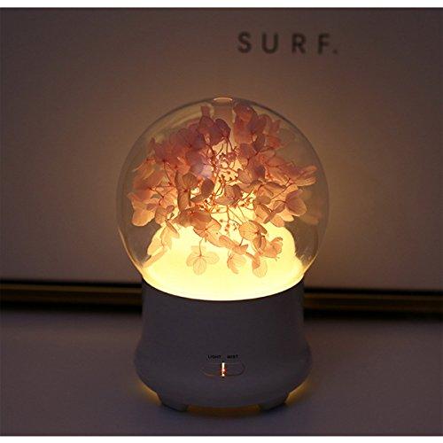 Sự sống đời đời. Hoa thôi, Kaoru máy ngày Valentine quà siêu âm máy Colorful mini đèn ( Hydrangea (P