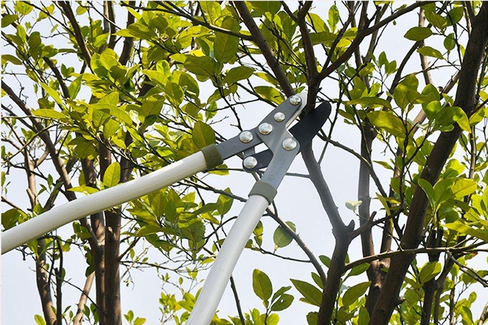 Worth vườn cao cắt cắt cành nhánh thô chống gỉ cẳng chân cắt lưỡi dao kéo Nhật Bản nhập khẩu 1215