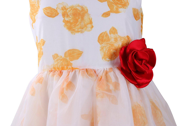 Emma RILEY nữ không có tay áo voan mỏng tem về hoa công chúa tiệc đầm, Hoa hồng, Hoa.