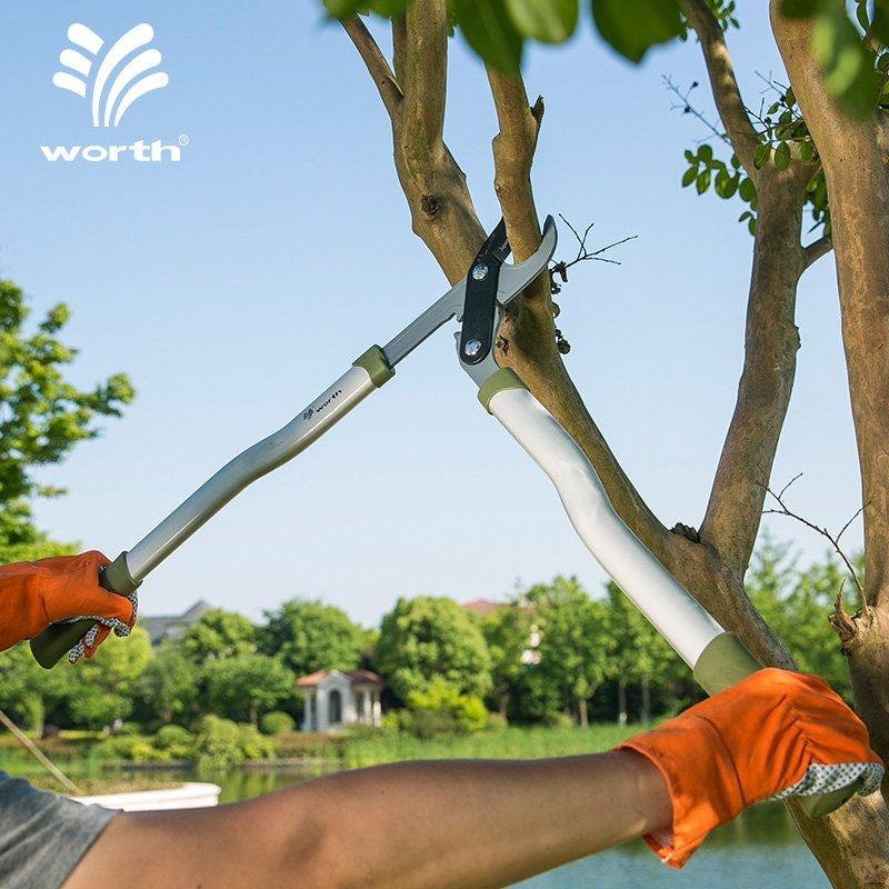 Worth vườn hoa chi nhánh thô cắt mạnh kéo cành cây vườn 1253 công cụ cắt