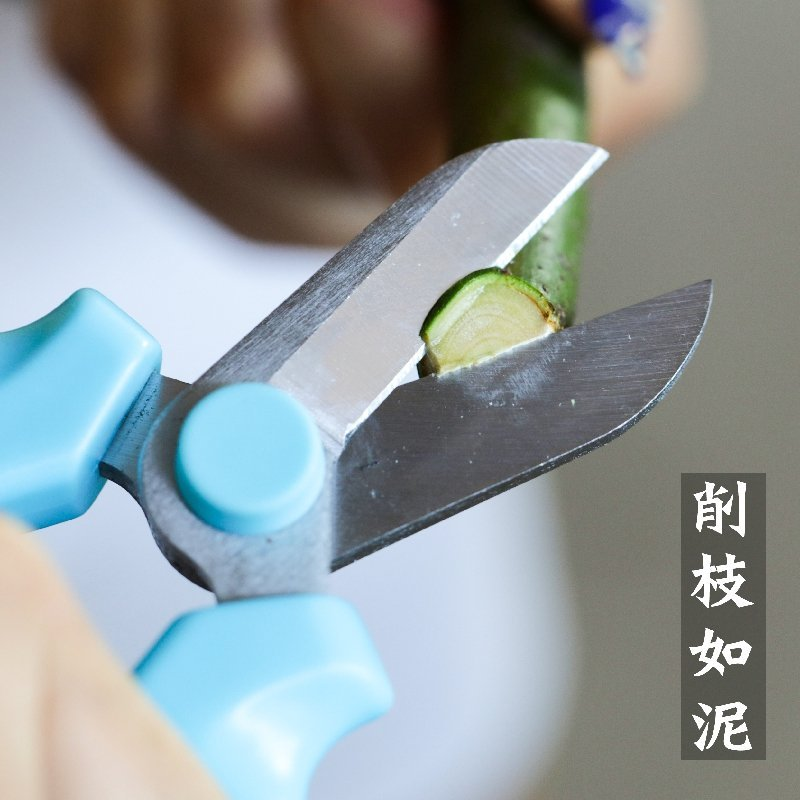 Doruik vườn. Vườn hoa công cụ cắt kéo cắt strictum nhà vườn hoa cửa hàng cắt kéo cắt cắt cành thô cắ