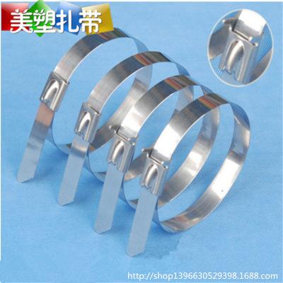 Các loại dây thừng khác [Factory cửa hàng] cung cấp tự khóa bằng thép không rỉ bằng nhựa tie tie khó