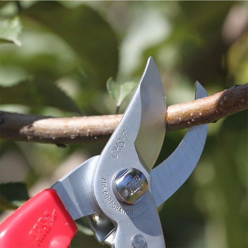ARS  Vườn cây ăn trái ARS cắt cắt cắt CHS-7 (nhà cung cấp dịch vụ trực giao)