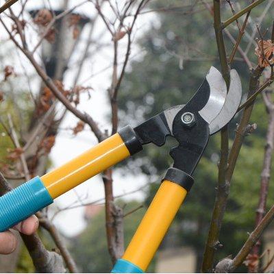 Premium nhựa cầm kéo cắt tỉa hoa và cây cảnh hàng rào cây xanh cắt cành cắt cắt cỏ.