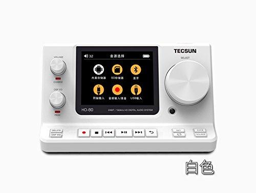 [Tecsun/] HD-80 mô phỏng âm thanh kỹ thuật số, màn hình máy kỹ thuật số, quản gia /HiFi / (màu trắng