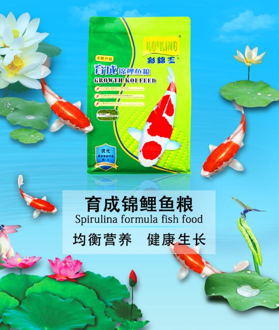 KOIKING   Choi Cẩm Vương (KOIKING) cá lớn ăn bánh trong cá Koi dục Adults feed Phao - 1kg (3.5mm)
