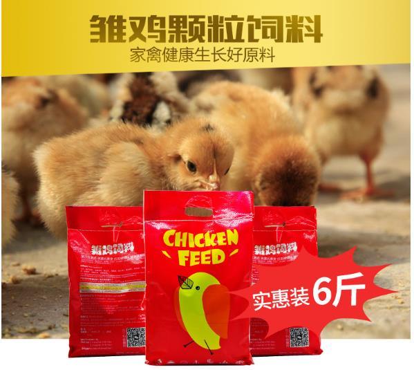 BAMU   8 phút (BAMU) gà nuôi gà thịt gà trứng gà con ăn hạt ngỗng, vịt con chim cút nuôi gà con ăn 1