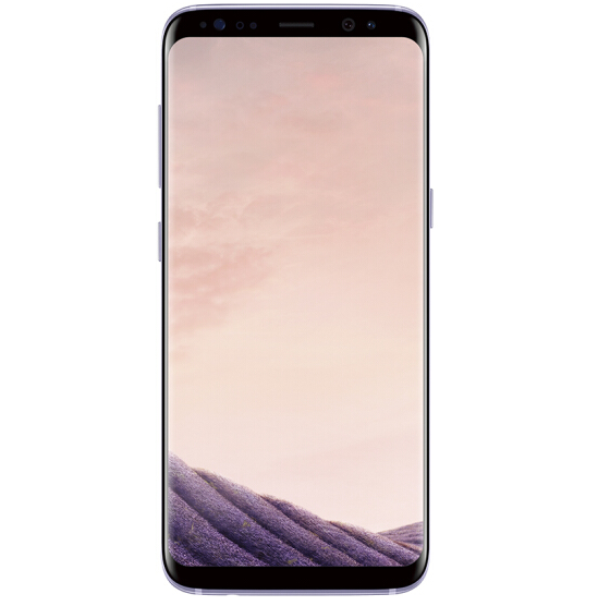 Samsung Galaxy S8 (SM-G9500) 4GB+64GB