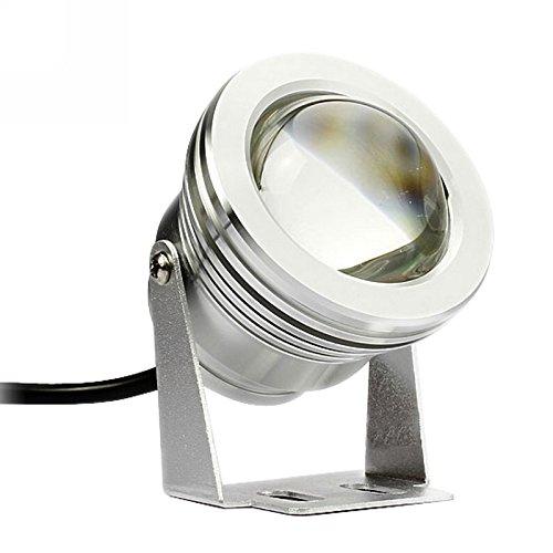 Metia Xe Ánh Sáng Xe Máy Điện Ánh Sáng LED Fog Ánh Sáng Đèn Lồng Siêu Nhẹ 12 V 10 Wát Big Eagle Eye