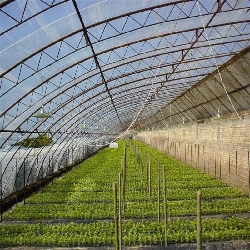 Một số lượng lớn của bán buôn polyethylene phim nhựa nông nghiệp nhà kính phim pe nhà kính phim mà k