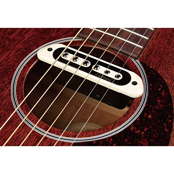 DeArmond Sound Hole Pickup Giai điệu Boss