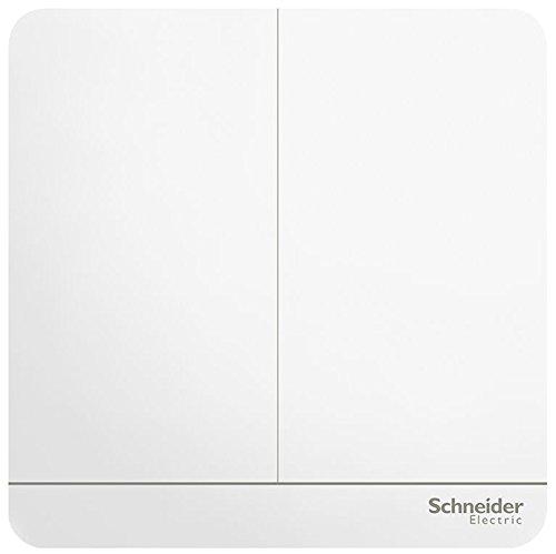 Schneider điện chuyển đổi ổ cắm bảng chuyển đổi đôi mở kiểm soát kép chuyển đổi 16a loạt thời trang