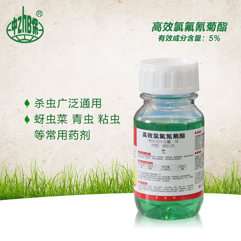 Kungfu 5% beta-cypermethrin rau cây ăn quả bắp cải sâu bướm thuốc trừ sâu phổ biến thuốc trừ sâu 200