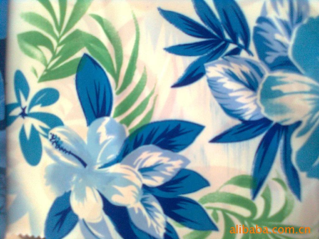 Vải rèm dielsianum thảm có ánh sáng.