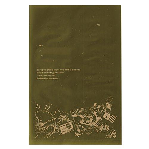 Túi quà tặng túi PE phẳng Cổ điển xanh (100 ảnh) AQG-5