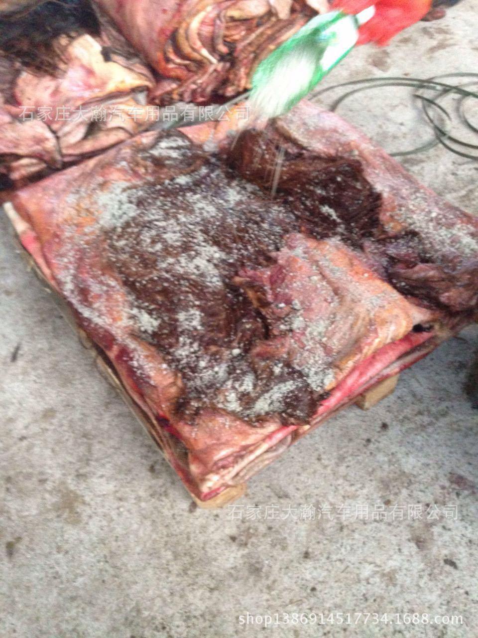 United Ngoại Mông Cổ nhập khẩu ướt bán buôn Wet salted horsehide
