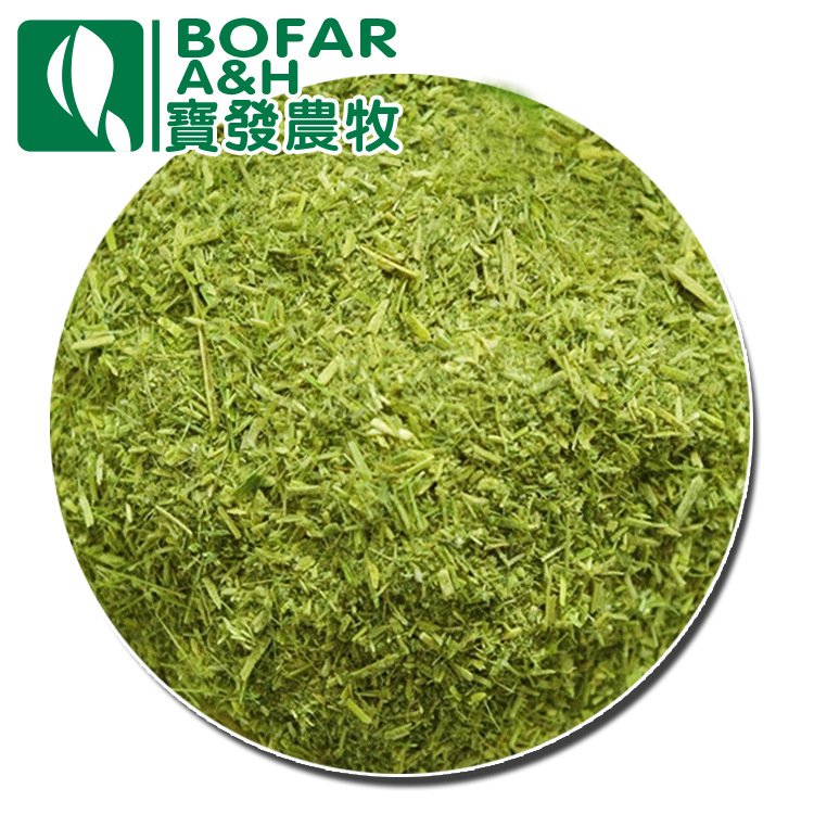 Các nhà sản xuất cung cấp cỏ linh lăng, vịt, ngỗng, thức ăn gia súc đặc biệt, thức ăn gia súc, thức