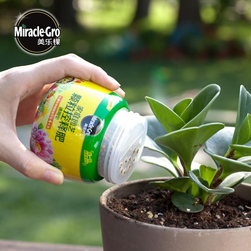 Merlot hạt kiểm soát  phân bón rau , hoa , cây xanh , giúp cây mọng nước .