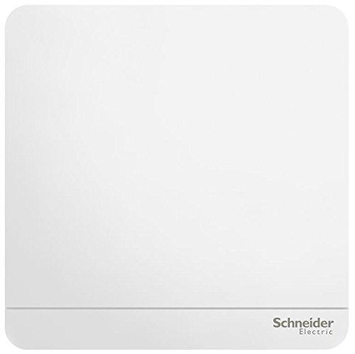 Schneider điện Schneider điện chuyển đổi ổ cắm bảng chuyển đổi một mở kiểm soát kép chuyển đổi 16a l