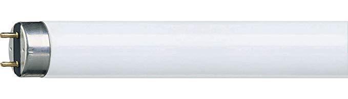 Philips Philips 927921086513 Ống huỳnh quang - ổ cắm G13 - 36 Watt