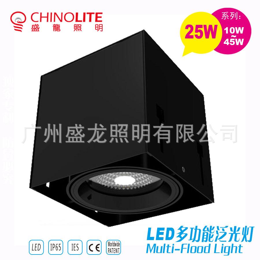 Bóng đen LED âm trần Mới 25WLED ngày trong ánh sáng đèn lồng.