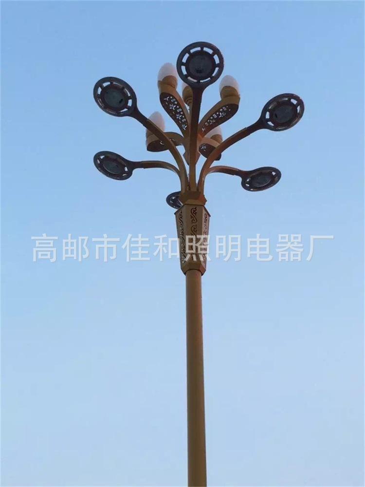 Đèn LED chiếu sáng công Nhà sản xuất thanh sân ngoài trời cao dẫn đến thành phố mới tùy chỉnh landsc