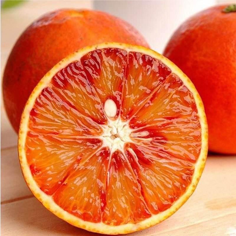 Trái cây : Cam Ruột Đỏ cam  zizhong Taroco
