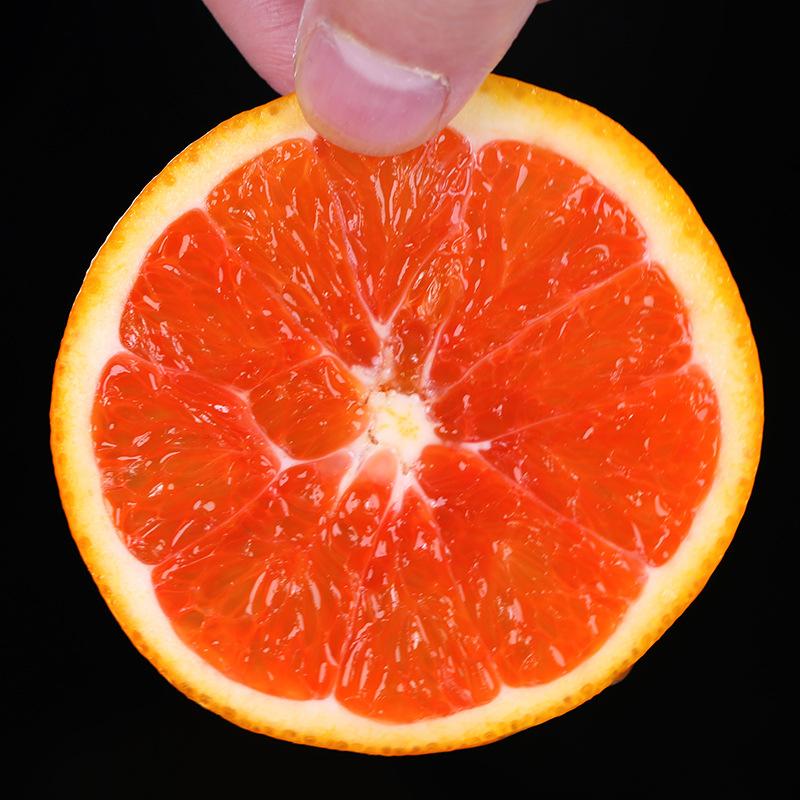 Qủa Cam Ruột Đỏ - Nhãn hiệu  Yi Orange Orchard