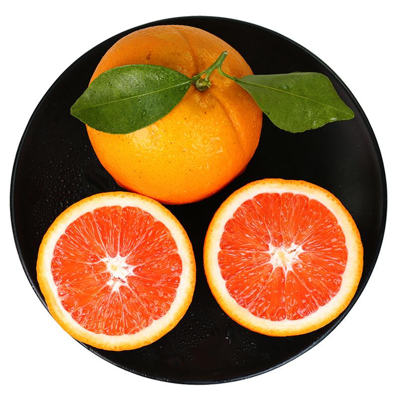 Trái cây : Cam Ruột Đỏ cam  YI Orange Orchard
