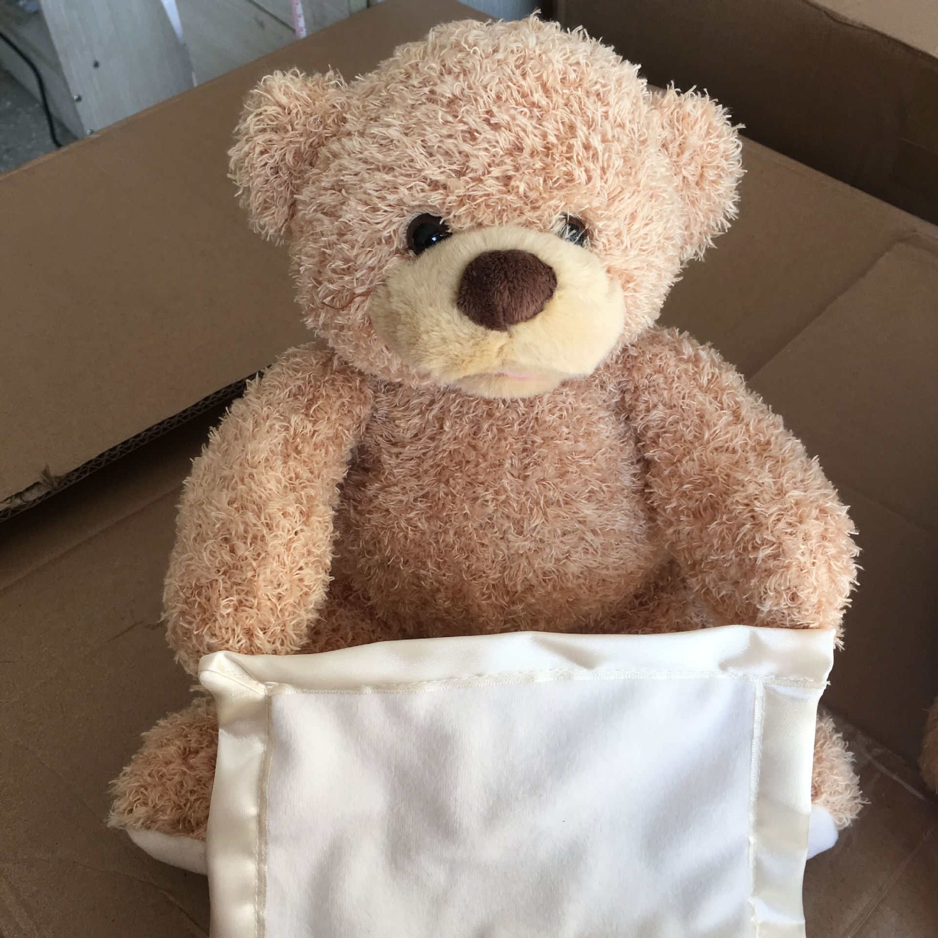Búp bê vải Nhà sản xuất mô hình vụ nổ Gấu Mỹ Amazon peekaboo sẽ nói chuyện để di chuyển gấu bông đồ
