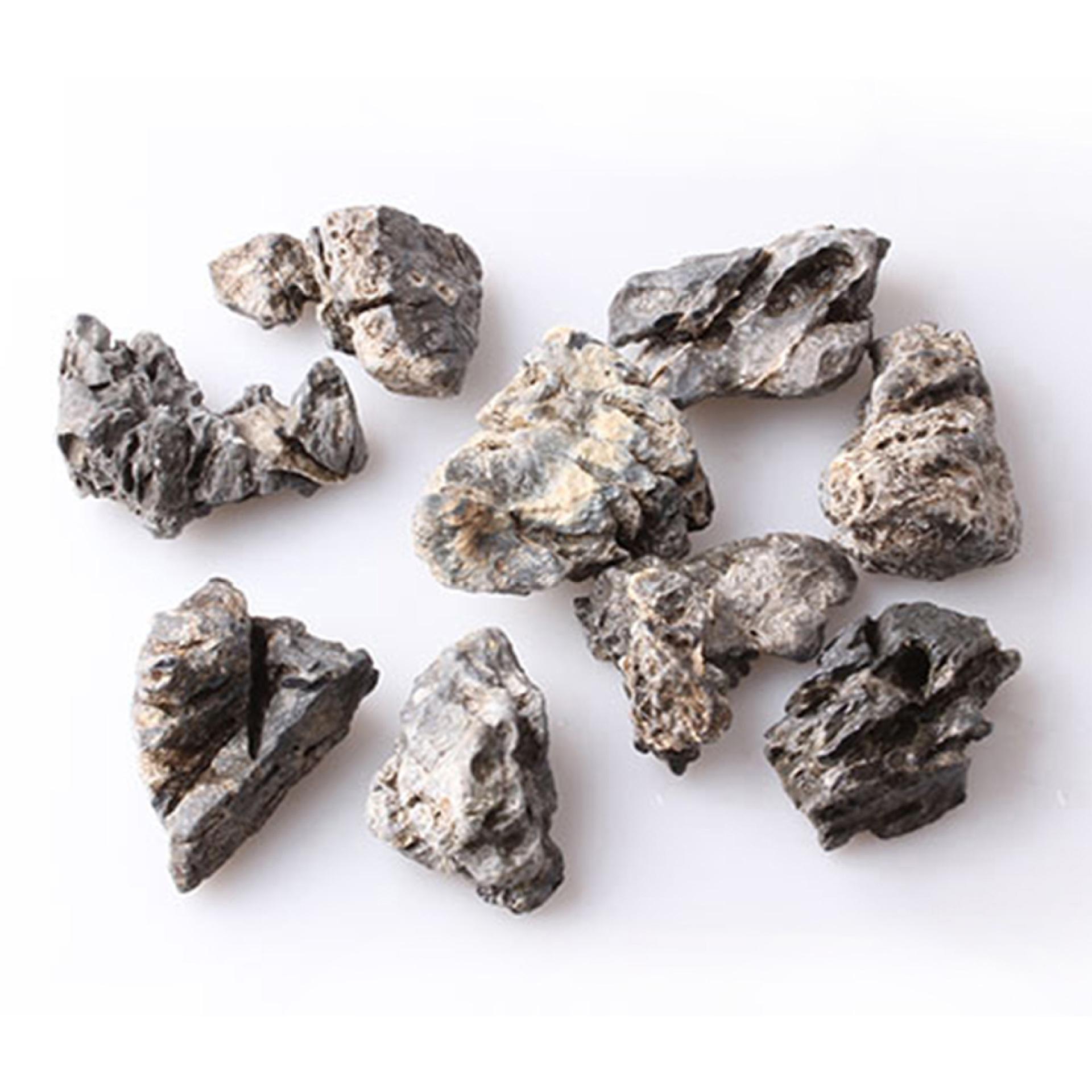 CTGF Cảnh quan Mini Rêu vi sinh thái cảnh quan chai trang trí đá Qinglong đá đá nhỏ đá DIY lắp ráp t