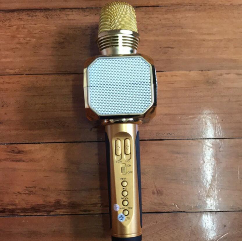 Micro Hát Karaoke SD-10 Kèm Loa Bluetooth Spring Come