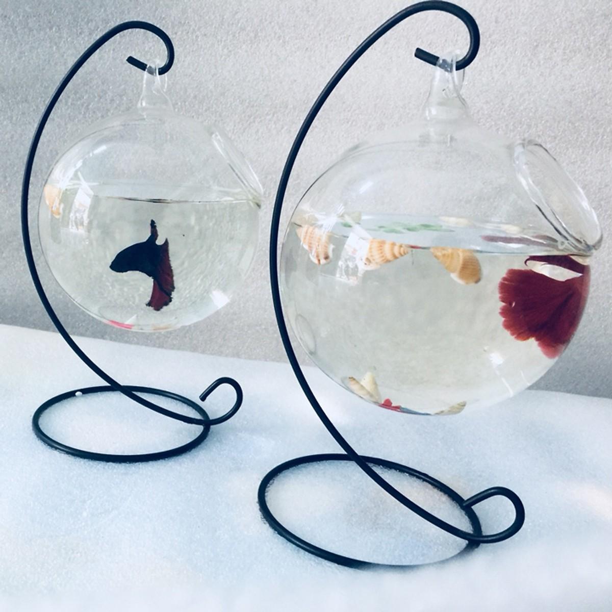 Combo 2 Bể cá mini để bàn treo chữ C Tặng tiểu cảnh
