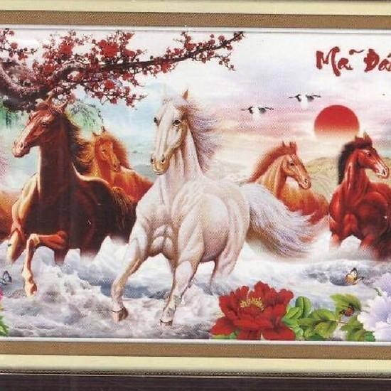 Tranh thêu chữ thập mã đáo thành công 8 con ngựa 3D Ailuo AL53458 [Chưa thêu]
