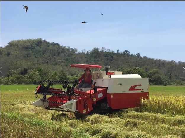 Máy móc AF88T Kết hợp máy gặt đập lúa .