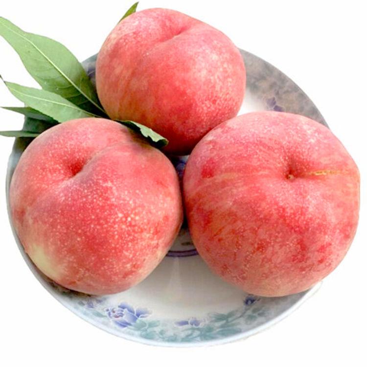 CHUNGUOFANG Trái cây(kiwi,táo) Thiểm Tây quả đào tươi Mùa theo mùa đào giòn phụ nữ mang thai mùa xuâ